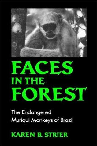Download Faces in the forest