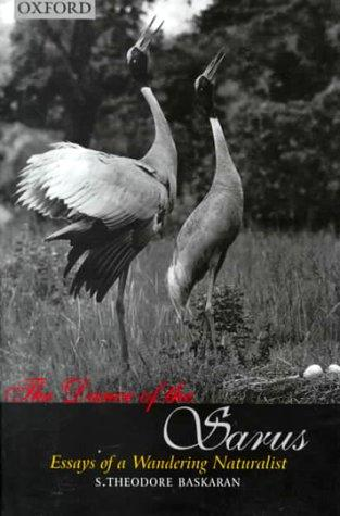 The dance of the sarus