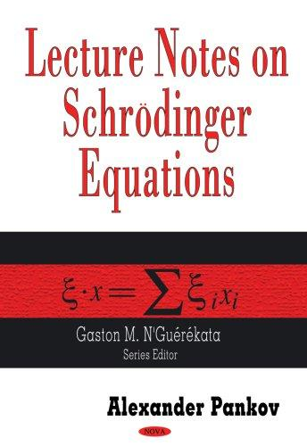 Lecture Notes on Schrodinger Equations (Contemporary Mathematical Studies) by Alexander Pankov