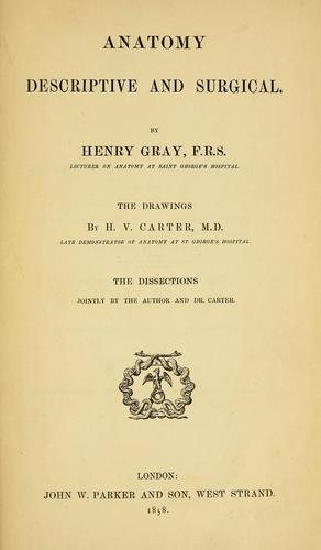 Anatomy : descriptive and surgical by Henry Gray